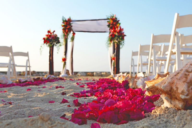 http://s3.amazonaws.com/wedding_prod/photos/502d61d5b1edcab75c48605a3664561d_m