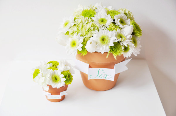 Diy flower pot favors and centerpieces project wedding